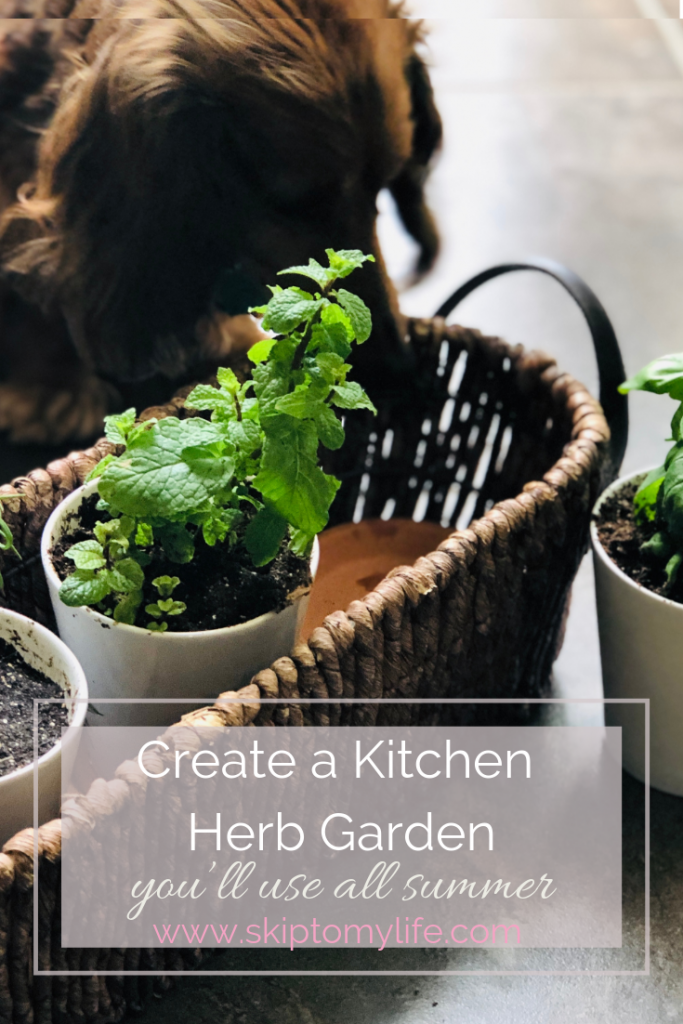 How to grow an herb garden/Gardens for small spaces
