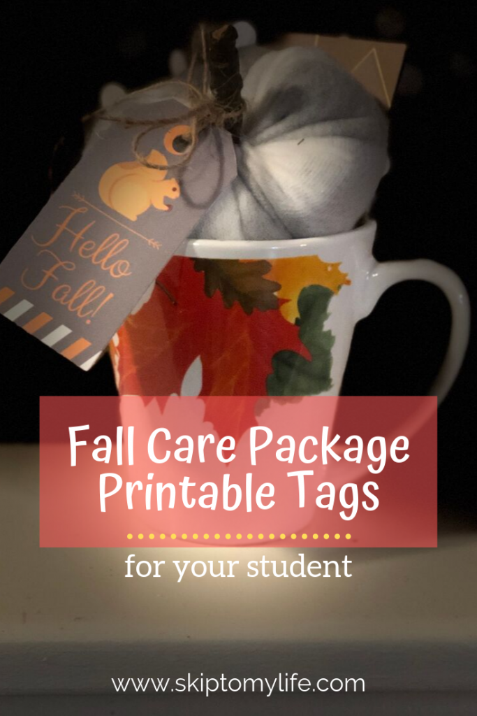 You'll have fun making this fall care package for your student.