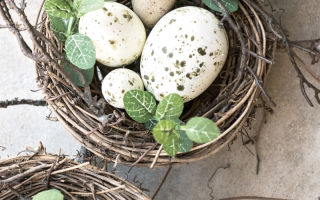 Armed with these 5 things about Empty Nest, you'll make the transition a little smoother.